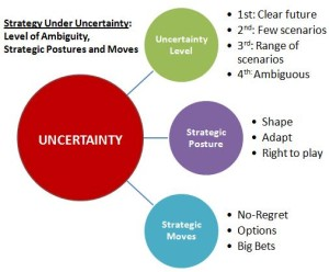 strategy-under-uncertainty-framework